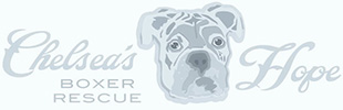 Chelsea's Hope Boxer Rescue Logo